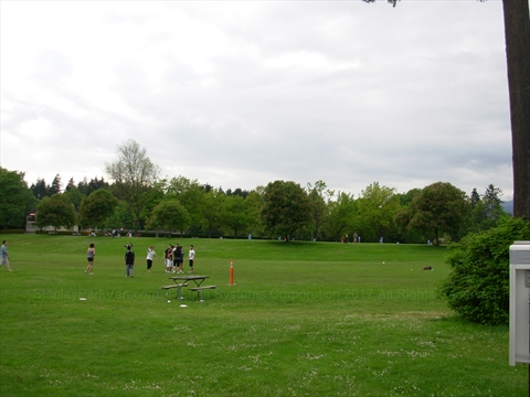 Ultimate Frisbee in Stanley Park