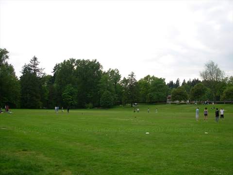 Ultimate Frisbee in Stanley Park, Vancouver, B.C., Canada