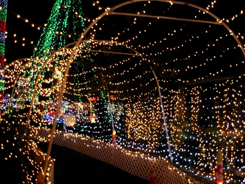 Bright Night Christmas Train in Stanley Park, Vancouver, B.C., Canada