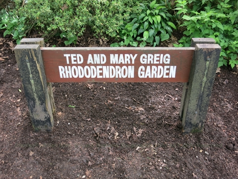 Ted and Mary Greig Rhododendron Garden in Stanley Park, Vancouver, B.C., Canada