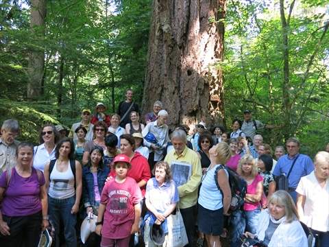 Walking Tour of Stanley Park, Vancouver, B.C., Canada