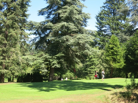 Stanley Park Pitch and Putt Golf Course
