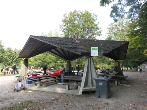 Picnic Area in Stanley Park, Vancouver, British Columbia Canada