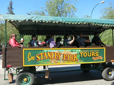 Horse-Drawn Tour of Stanley Park, Vancouver, B.C., Canada