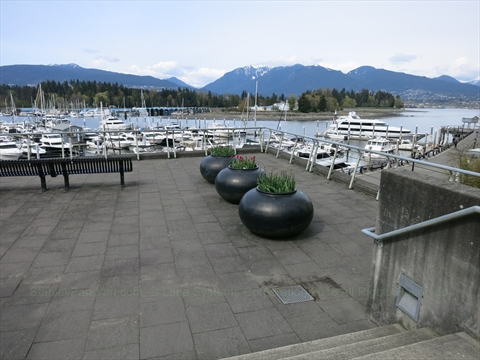Coal Harbour Seawall, Vancouver, BC, Canada
