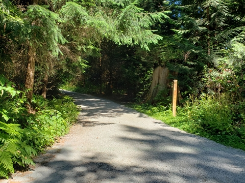 Brockton Oval Trail in Stanley Park
